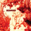 Purchase Oceansize MP3