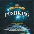 Purchase Pushking MP3