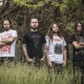 Purchase Revocation MP3
