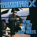 Purchase Terminator X MP3