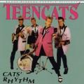 Purchase Teencats MP3
