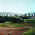Purchase Amber Asylum MP3