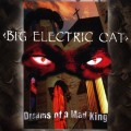 Purchase Big Electric Cat MP3