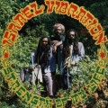 Purchase Israel Vibration MP3