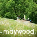 Purchase Maywood MP3