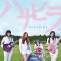 Purchase Kimi No Sei MP3