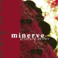 Purchase Minerve MP3