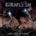Purchase Birdflesh MP3