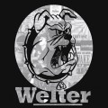 Purchase Welter MP3