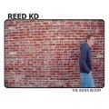 Purchase Reed KD MP3