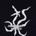 Purchase Forgotten Silence MP3