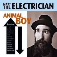 Matt The Electrician