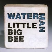 Little Big Bee