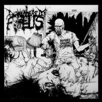 Dismembered Fetus