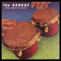 The Bongos