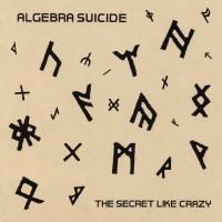 Algebra Suicide