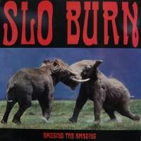 Slo Burn