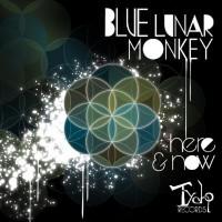 Blue Lunar Monkey