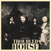 Troubled Horse