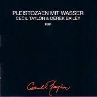 Cecil Taylor & Derek Bailey