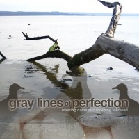 Gray Lines Of Perfection