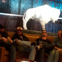 The Buffalo Ruckus