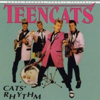 Teencats