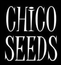 Chico Seeds