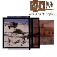 The Big Dish