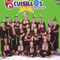 Cuisillos