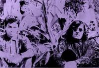 Purple Overdose