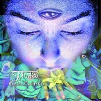 Shiva3 Project