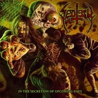 Sectesy