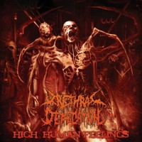 Urethral Defecation