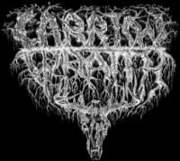 Carrion Wraith