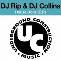 DJ Rip